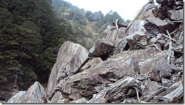 北アルプスを思わせる岩